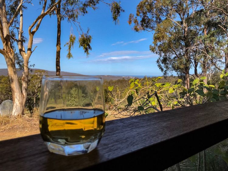 Scotch with a view Food And Drink Refreshment Alcohol Tree Drinking Glass Landscape Beauty In Nature Sunlight Scotch Whisky Drink Relaxing Be. Ready.