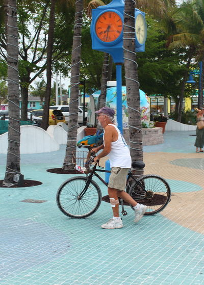 Casual Clothing Enjoyment Eye4photography  Florida Fort Myers Beach Fun Leisure Activity Lifestyles Parrot