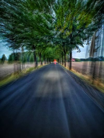 Eyemphotography Eyem Best Shots Cycling Bycicle HUAWEI Photo Award: After Dark Morning Light Tree Road Journey Sky Travel Empty Road Road Marking Treelined Asphalt Diminishing Perspective Country Road The Way Forward Bicycle Lane #urbanana: The Urban Playground