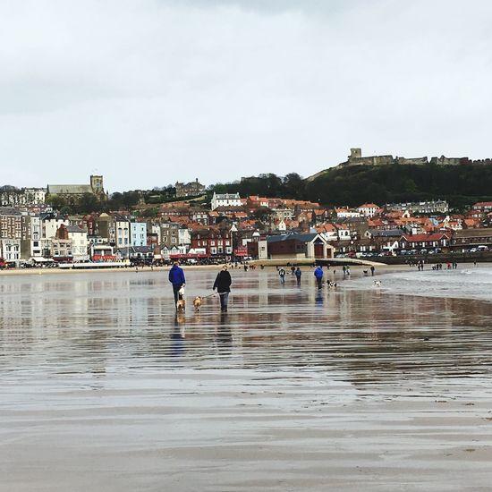 Wet Sand Beach Seaside Water Coast Coastline People Walking On The Beach British Seaside