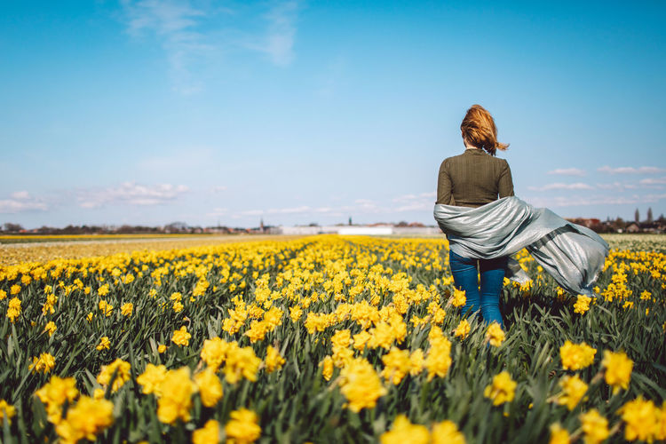 Rear view of person with yellow flowers in field
