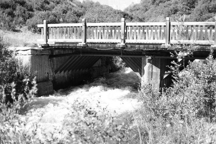 Bridge over water in park