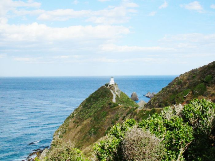 Nugget Point Lighthouse Nugget Point New Zealand Beauty Scenic EyeEmNewHere Water Sea Beach Tree Cliff Sky Horizon Over Water Cloud - Sky Lighthouse Seascape Ocean