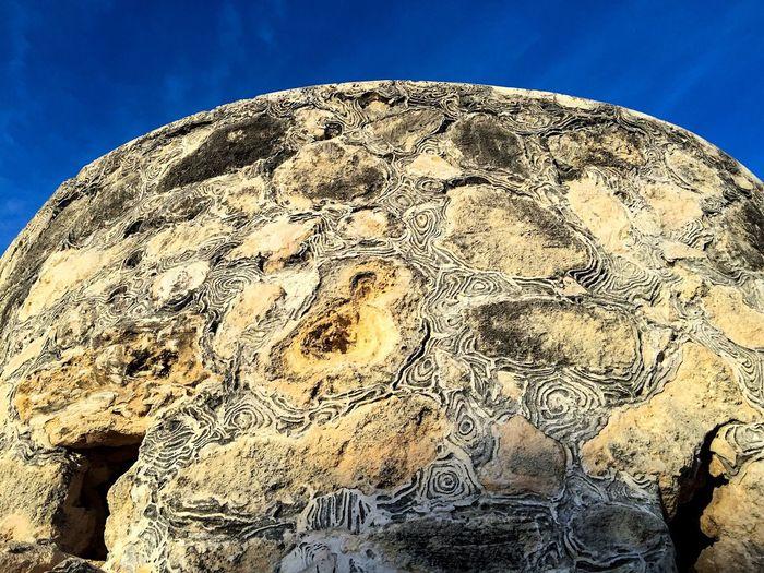 Textures of Limestone Limestone Cliff Cliff Rock Stone Headland Coastal Limestone Arthur's Head Nature Textures Textures And Surfaces Textured  Coastal Rock Patterns Patterns In Nature Rock Formation Formation Outcrop Outcropping Fremantle, Western Australia
