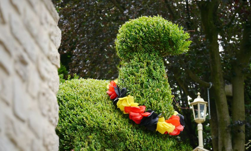 Low angle view of topiary in park