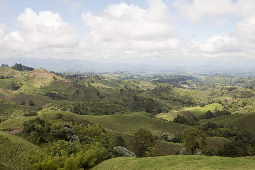 View from the Filandia lookout on the outskirts of Filandia, Quindio in Colombia's Coffee Region Andes Colombia Beauty In Nature Coffee Region Day Landscape Nature No People Outdoors Scenics Sky