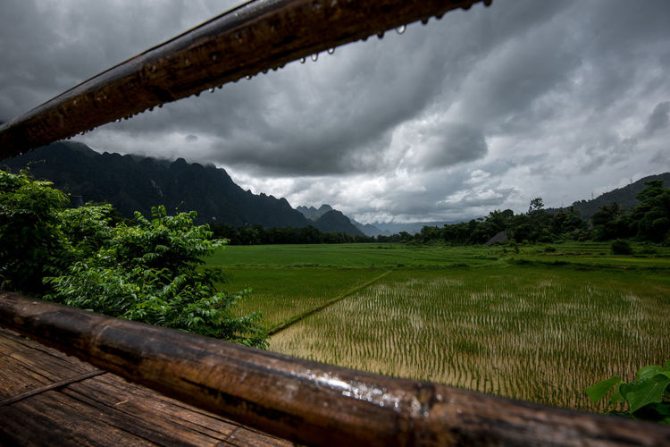 ASIA Cambodia Cloudy Sky Farmland Green Lifestock South East Asia Thailand Agriculture Beauty In Nature Cloud - Sky Crops Field Landscape Laos Mountain Nature No People Outdoors Ricefield Ricefields, Rural Scene Scenics Sea Wet