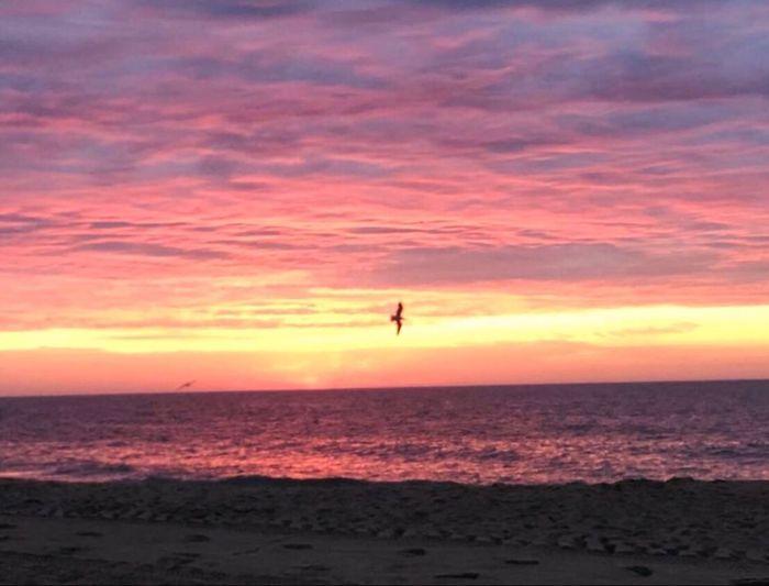 Sunrise Sea Horizon Over Water