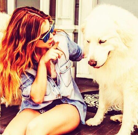 Dog Sweet Love