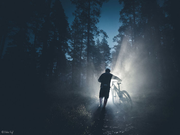 One of my local biketrails Light MTB The Great Outdoors - 2018 EyeEm Awards Adventure Forest Freeride Light And Shadow Mist Mountainbike Nature One Person Outdoors Sport Trailbiking Tree