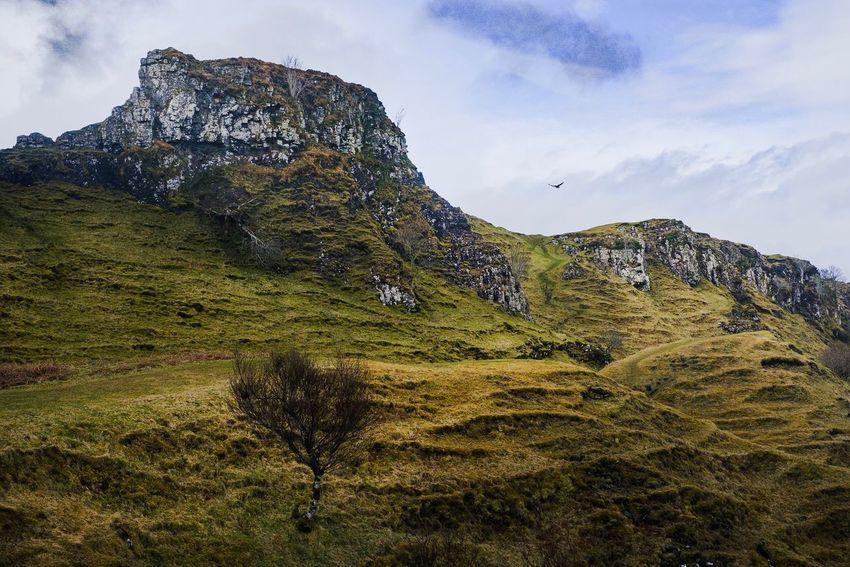 Scotland Skye Wilderness Soaring Golden Eagle Fairy Glen Fairy Glenn Sky Cloud - Sky Beauty In Nature Plant Nature Tranquility Scenics - Nature Mountain No People Tranquil Scene Outdoors Idyllic