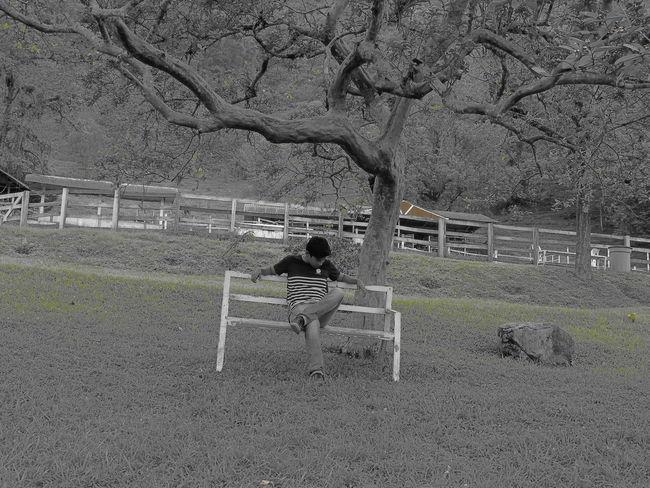 Boy Nature Day Follow Followback World Man First Eyeem Photo Tree Followforfollow Followme Follow4follow Like Likeforlike Likes People Beautiful Beauty In Nature