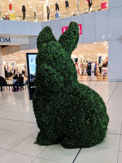 rabbit in the mall ! EyeEmNewHere Green Colorful Sport's Flowers,Plants & Garden Shopping Mall Christmas Decoration Tree Christmas Men Holiday - Event Celebration christmas tree Tradition Women Celebration Event