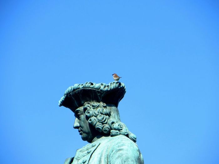 Low Angle View Of Bird On Statue Against Clear Blue Sky