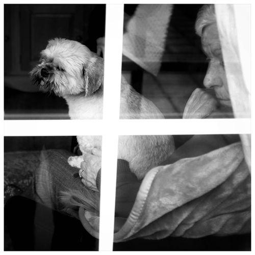 FUJIFILM X100S Holywood County Down Northern Ireland Portrait Mother Maisie Sadness