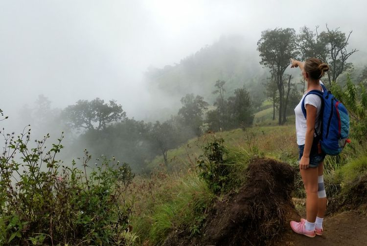 Full Length Of Female Hiker Pointing On Trees In Forest During Foggy Weather