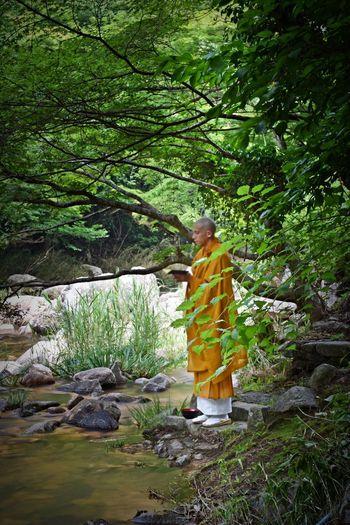 豪渓 総社市 EyeEm Best Shots EyeEm Selects EyeEm Gallery EyeEmNewHere Long Exposure Tree Real People One Person Leisure Activity Plant Nature Green Color