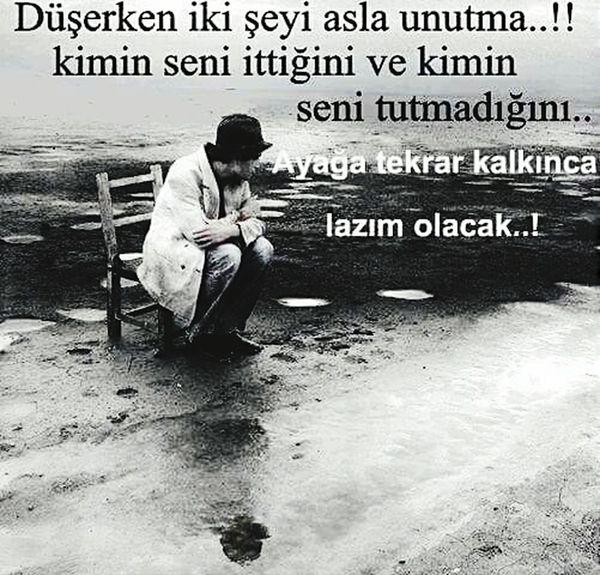 Kayseri Kayserili Bingöl Bingöllü