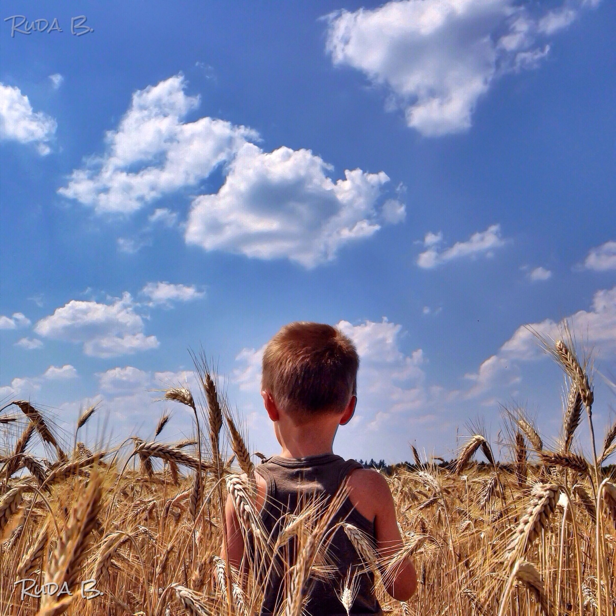 sky, lifestyles, leisure activity, childhood, rear view, agriculture, rural scene, field, casual clothing, person, farm, cloud - sky, elementary age, boys, nature, cloud, crop, waist up