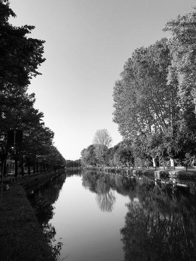 Autumn in Pavia