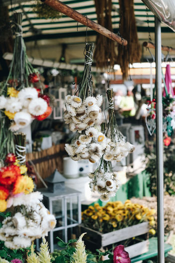 Flower for sale at market stall