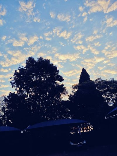 Celebration Chilledvibes Cloudy Carparking Beauty Tree Sunset Pixelated Sky Close-up Calm Idyllic