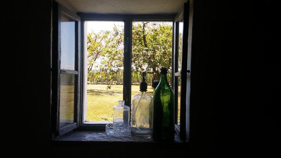 bottles Window Summer Tuba Tanya Bottles