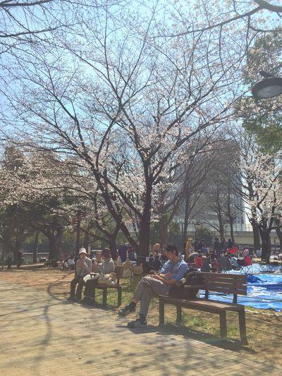 Springtime Spring