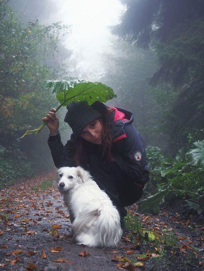 under my umbrella Visual Creativity Pets Friendship Dog Portrait Foggy