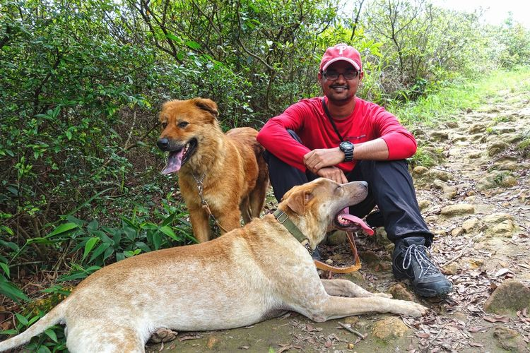 Hike with dogs to sweat it out like a dog! Adventure Animals Brown Day Dog Field Fitness Happy Hike Hiking HongKong Hulk Love Outdoors Pet Collar Pets Portrait Relaxation Sitting Summer Togetherness Trail Tree Wanderlust Workout