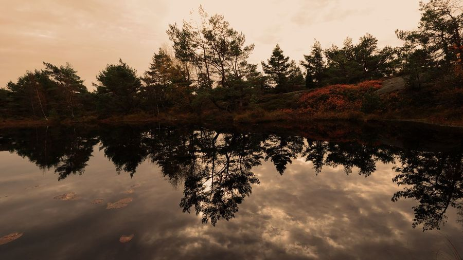 Reflection Water Nature EyeEmNewHere Beauty In Nature Sky Day Forest Tree Lake Hiking EyeEm Selects EyeEmNewHere