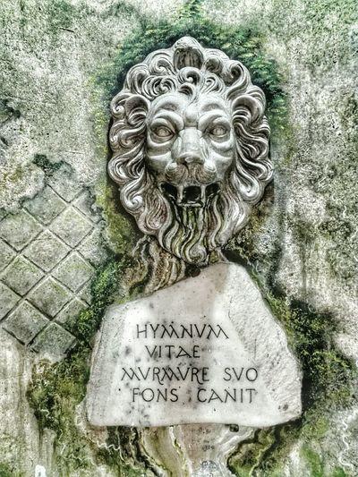 Hymnum Vitae Murmure Suo Fons Canit Con il suo mormorio la fonte canta. Roma Rome Italy Italia Quoteoftheday Citazioni Detti Latino Latin Fountain
