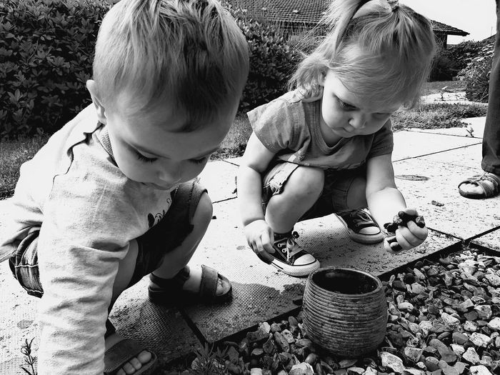 Siblings Collecting Pebbles While Crouching In Yard