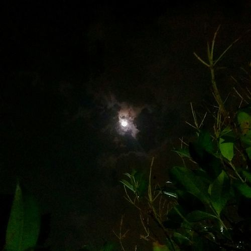 Always be lonely ... at day and even the night,,, the clouds and the stars got no mistake,,, pollution !!! Taking Photos Moonlight Night Photography Open Edit Bandung Htcm8 Htc One M8 Mobilephotography Mobile Photography Deceptively Simple