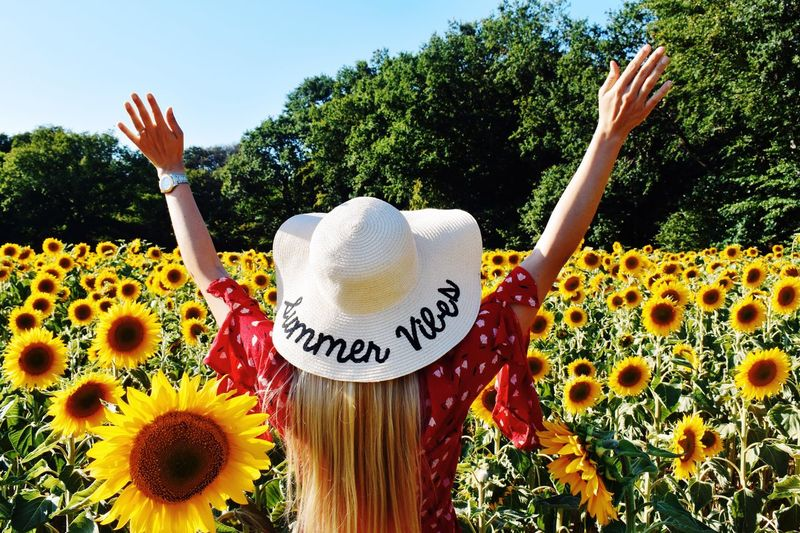 Rear view of woman with arms outstretched standing amidst sunflowers