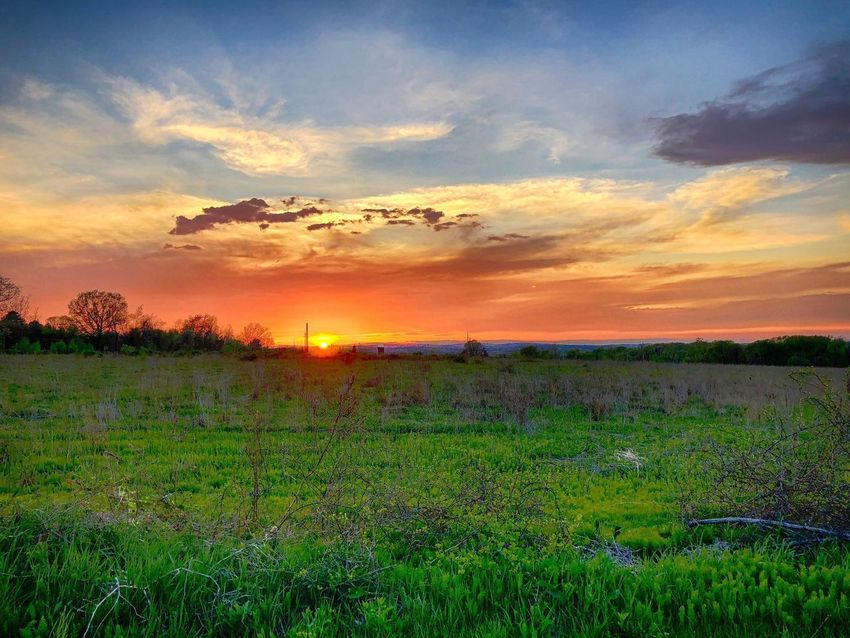 Countryside Sunset Sky Cloud - Sky Beauty In Nature Sunset Scenics - Nature Plant Field Land Tranquility Tranquil Scene Growth Landscape No People Nature Environment