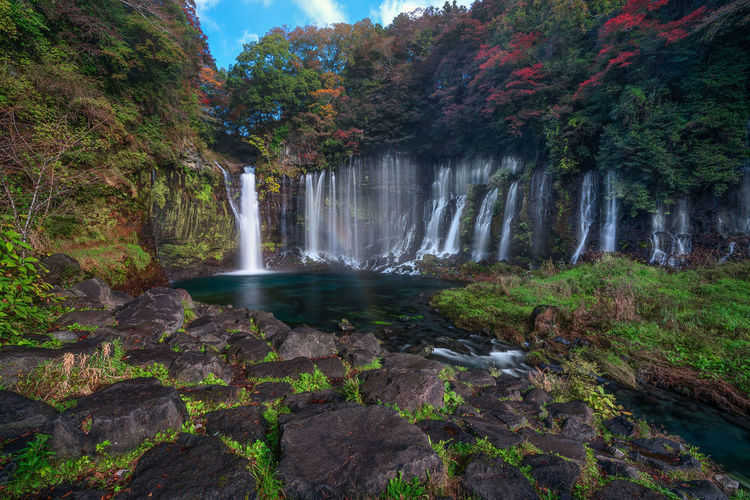 Shiraito Falls during Autumn season in Japan Japan Shiraito Falls Shiraitonotaki Falls Beauty In Nature Day Forest Freshness Long Exposure Motion Nature No People Outdoors Rapid Rock - Object Scenics Sky Tranquil Scene Tranquility Travel Destination Travel Destinations Tree Water Waterfall