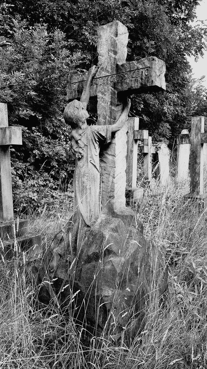 plant, tree, human representation, representation, sculpture, statue, day, cemetery, male likeness, art and craft, nature, grave, field, no people, creativity, grass, land, growth, religion, outdoors, angel