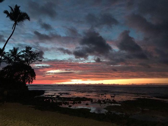 Kahalu'u Beach Aloha Kailua Kona♥♡♥ Sky Cloud - Sky Water Sunset Beach Tree Beauty In Nature Tranquility Dramatic Sky Tropical Climate Horizon Over Water Palm Tree No People Scenics - Nature