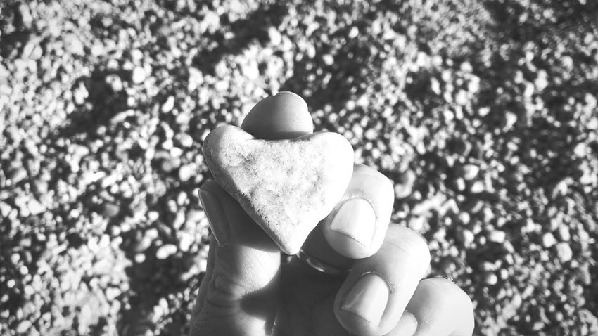 Hearts In Nature HeartRock Heartrockcafe Mattapoisett Má