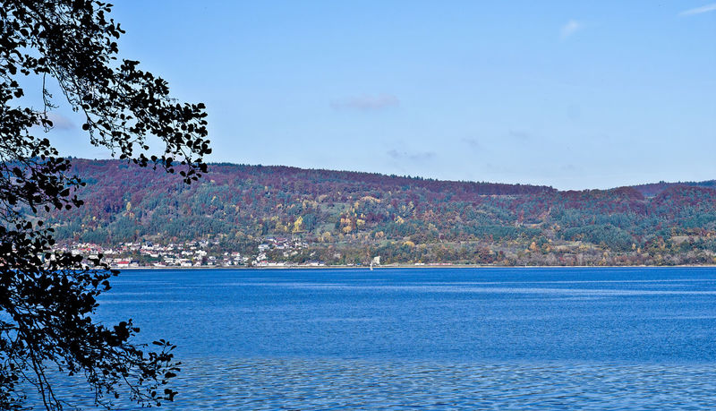 Autumn Lake Lake Constance Lake Constance, Germany Lake View Nature Recreation  Sky Water