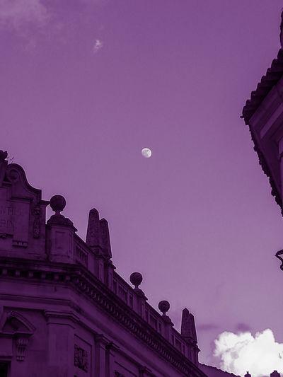 Púrpura y la