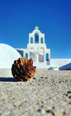 || Street Journals || Santorini, Greece. Pine Cone TheFoneFanatic Vacations Mobilephotography PhonePhotography Streetphotography Colorful Zenfone Photography Bokeh Clear Sky Blue Sky Close-up Scenics Summer In The City