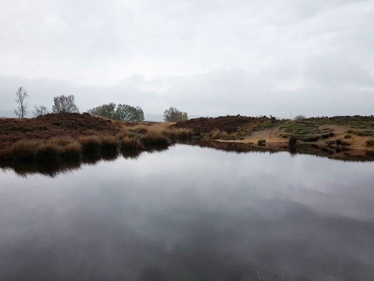 Outdoors Landscape No People Reflection Tree Cloud - Sky Sky Water Day Nature Heather Rocks Connected By Travel Lost In The Landscape Landscapes Yorkshire Norland Moor Photography Themes Moorland Freshness Tree Beauty In Nature Nature Fog Mania Reflection