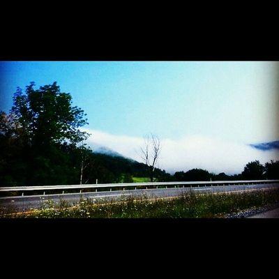 Fog on the mountain Nitttanymountains Happyvalley Roadphotography Nature trb_members1 explorepa pennsylvania