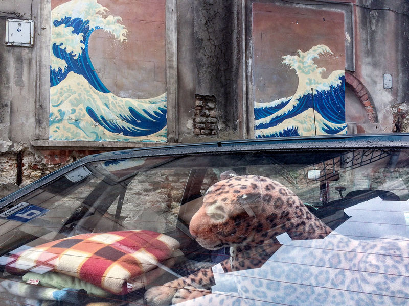 Old Town in Lublin, Poland Cheetah Cheetah Print City Japan Lublin Old Town Old Wall Poland Reflection Animal Car Interior IPhoneography Japanese Art Japanese Painting Mural No People Outdoors Painting Street Street Photography Streetart Streetphoto Streetphotography Waves Wildlife The Week On EyeEm Editor's Picks
