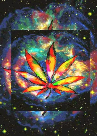 Ligalize Cannabis weed Ligalize It For Happy Summer
