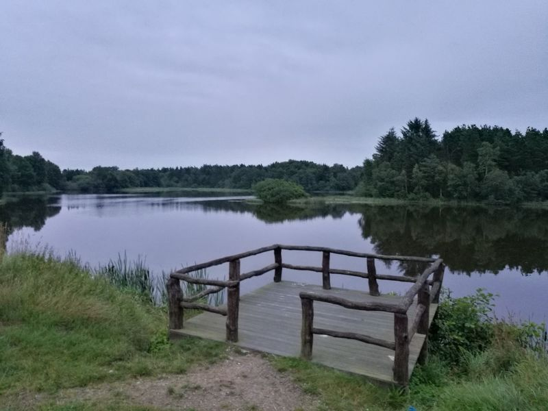 Svanholm sø DK Lake Water Tree Landscape Nature Sky Grass Outdoors Day No People Denmark 🇩🇰🇩🇰🇩🇰