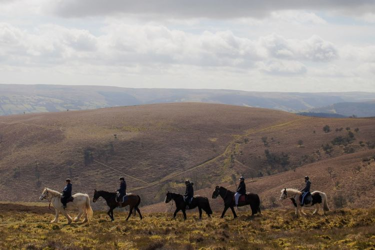 People riding horses on landscape against sky
