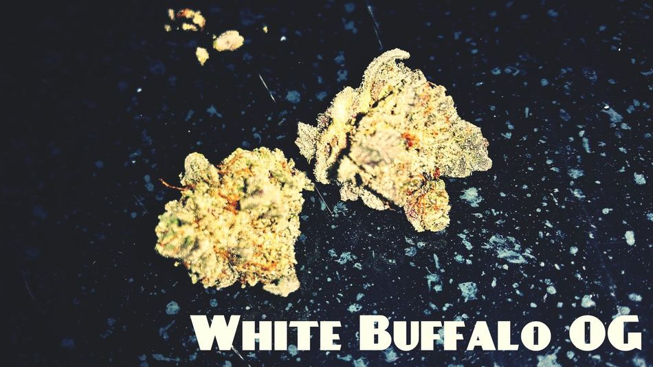 WhiteBuffaloOG Smokin Dope Dooooppeee!!!!!!